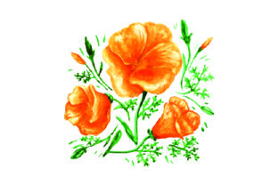 California Poppies Design in Watercolor Craft Design By Creative Fabrica Crafts