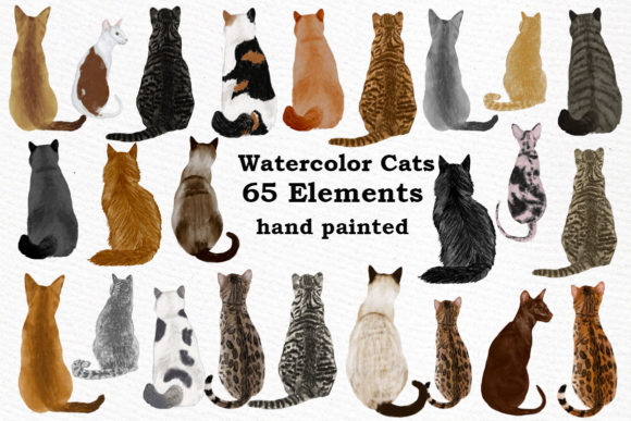 Cat Clipart Graphic Illustrations By LeCoqDesign
