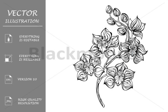 Download Free Contour Orchid Graphic By Blackmoon9 Creative Fabrica for Cricut Explore, Silhouette and other cutting machines.