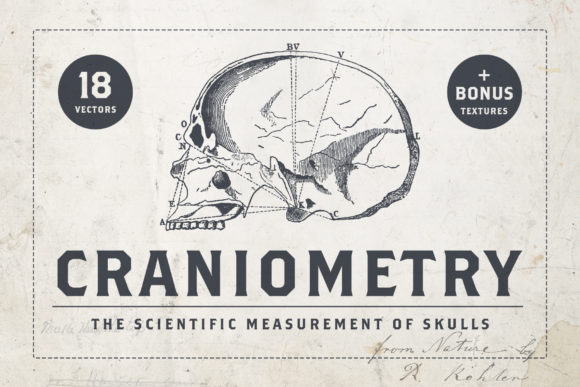 Craniometry Graphic By BlackLabel