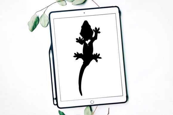 Crested Gecko Graphic Print Templates By Fortuna Prints