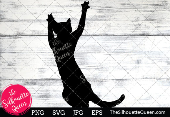Download Free Devon Rex Cat Silhouette Graphic By Thesilhouettequeenshop for Cricut Explore, Silhouette and other cutting machines.