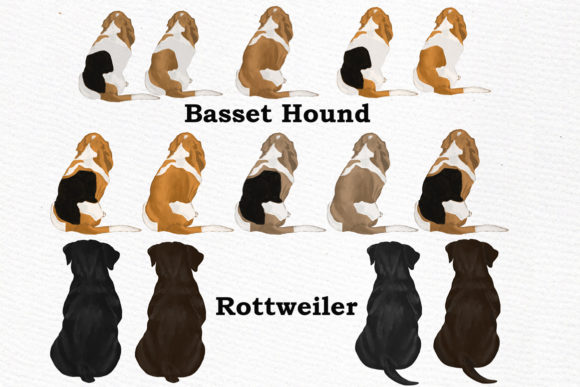 Dog Clipart Graphic Download