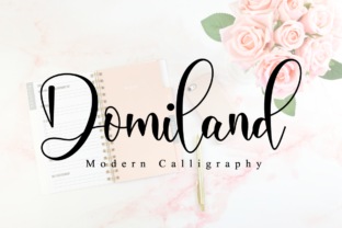 Print on Demand: Domiland Script & Handwritten Font By NissaStudio