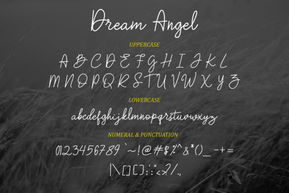 Print on Demand: Dream Angel Script & Handwritten Font By Typia Nesia - Image 7
