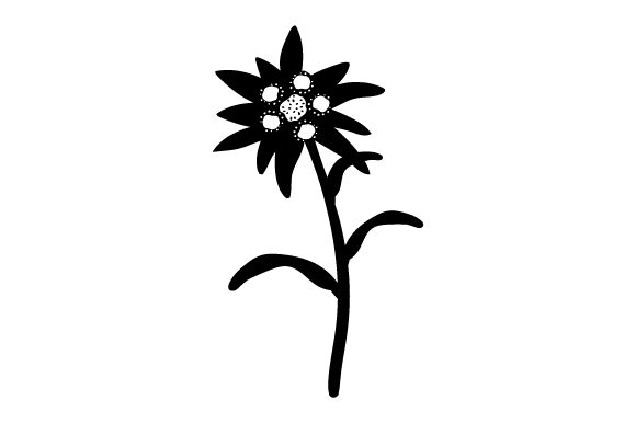 Download Free Edelweiss Flower Svg Cut File By Creative Fabrica Crafts for Cricut Explore, Silhouette and other cutting machines.