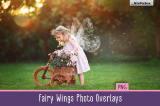Fairy Wings Overlays Graphic By MixPixBox