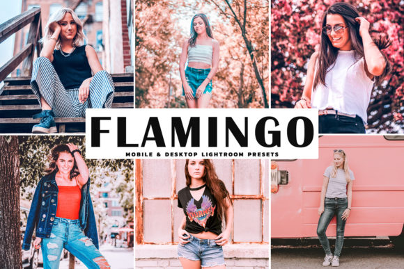 Print on Demand: Flamingo Pro Lightroom Presets Graphic Actions & Presets By Creative Tacos