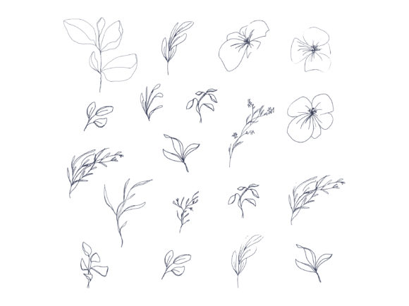 Print on Demand: Floral Pencil Drawing One Line Art Graphic Illustrations By Primafox Design - Image 4