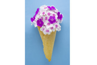 Download Free Flowers Ice Cream Cone Graphic By Sasha Brazhnik Creative Fabrica for Cricut Explore, Silhouette and other cutting machines.