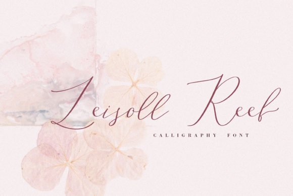 Print on Demand: Leisoll Reef Script & Handwritten Font By Primafox Design