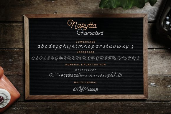 Print on Demand: Nakytta Script & Handwritten Font By CreatypeStudio - Image 7