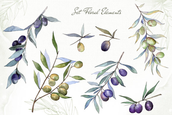 Print on Demand: Olive Branches Collection  Watercolor Graphic Illustrations By MyStocks - Image 4