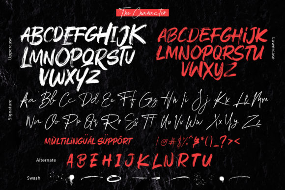 Rushink Duo Font By DK Project Image 4