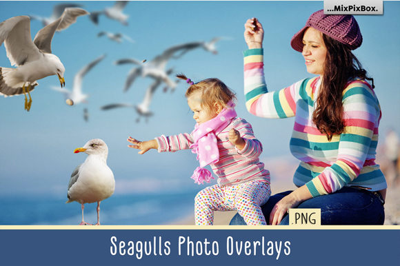 Print on Demand: Seagulls Photo Overlays Graphic Layer Styles By MixPixBox