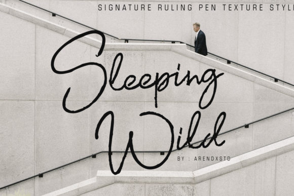Sleeping Wild Script & Handwritten Font By Arendxstudio