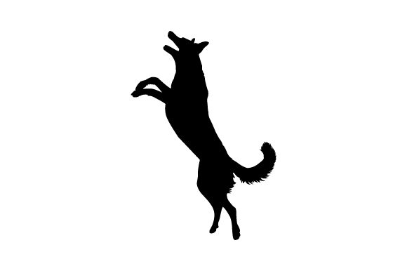 Smooth Collie Jumping - Realistic Dogs Craft Cut File By Creative Fabrica Crafts - Image 2