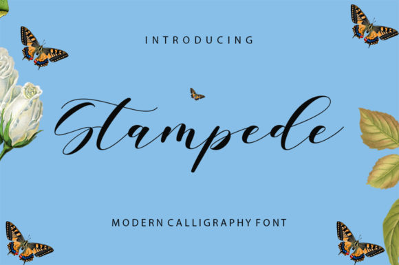 Print on Demand: Stampede Script & Handwritten Font By Encolab