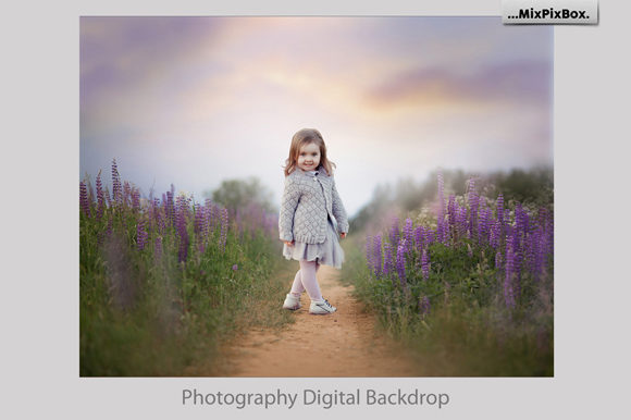 Print on Demand: Summer Backdrops Graphic Layer Styles By MixPixBox - Image 2