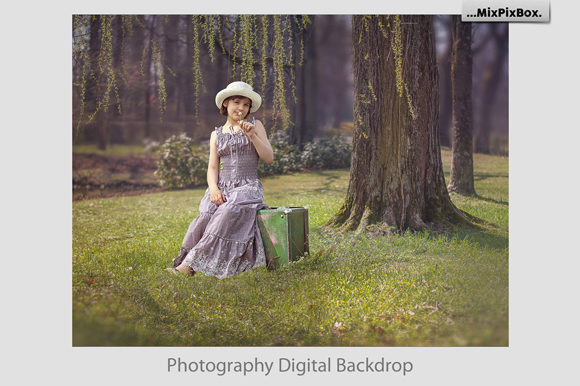 Print on Demand: Summer Backdrops Graphic Layer Styles By MixPixBox - Image 4