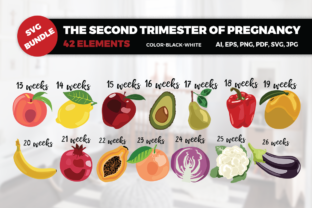 The Second Trimester of Pregnancy Graphic By duka