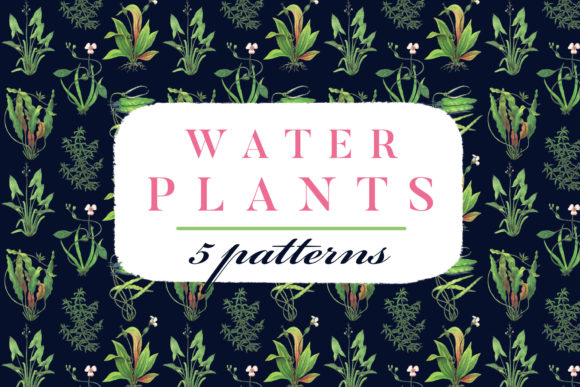 Water Plants Patterns Graphic By freezerondigital