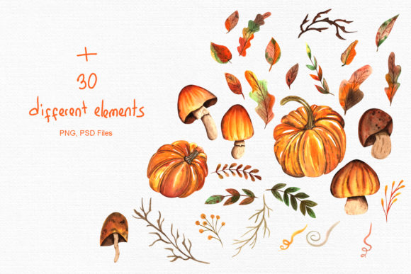 Watercolor Autumn Collection Graphic By tanatadesign Image 3