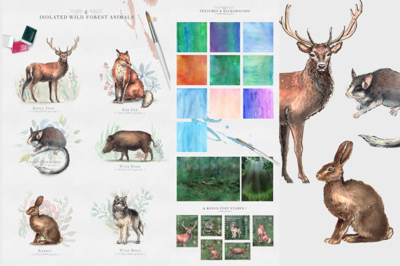 Wild Forest Watercolor Collection Graphic Illustrations By NassyArt - Image 2
