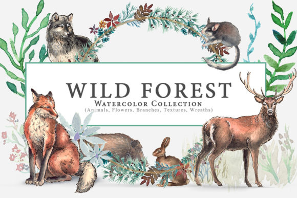 Wild Forest Watercolor Collection Graphic Illustrations By NassyArt