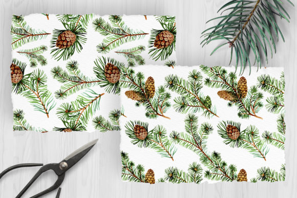 Print on Demand: Evergreen with Buds Watercolor Graphic Illustrations By MyStocks - Image 3