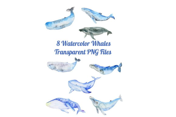 Download Free 8 Watercolor Whale Silhouettes Graphic By Scrapbook Attic Studio for Cricut Explore, Silhouette and other cutting machines.