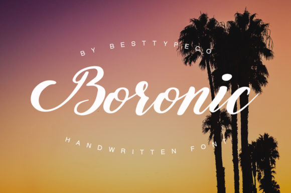 Print on Demand: Boronic Script & Handwritten Font By besttypeco