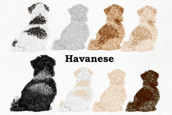 Dog Clipart, Dog Breeds, Pet Clipart Graphic Illustrations By LeCoqDesign - Image 4