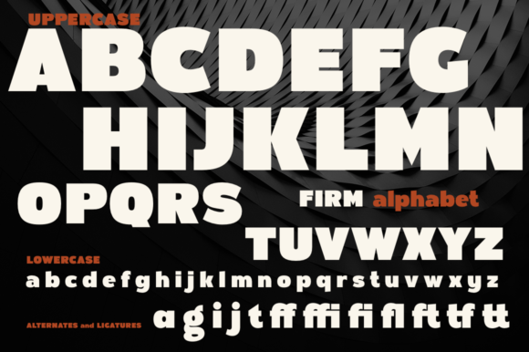 Print on Demand: Firm Sans Serif Font By Pasha Larin - Image 7
