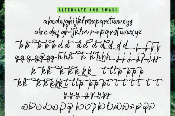 Greenland Duo Font By InspiraType Image 12