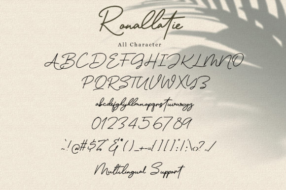 Print on Demand: Ronallatie Script & Handwritten Font By dmletter31 - Image 8