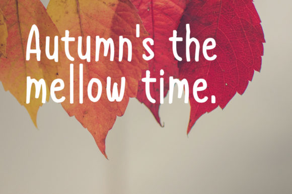 Download Free Autumn Happiness Font By Instagram Fonts Creative Fabrica for Cricut Explore, Silhouette and other cutting machines.