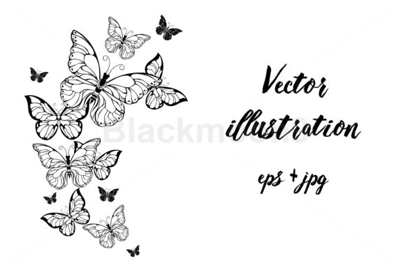 Flying Contour Butterflies Graphic Illustrations By Blackmoon9