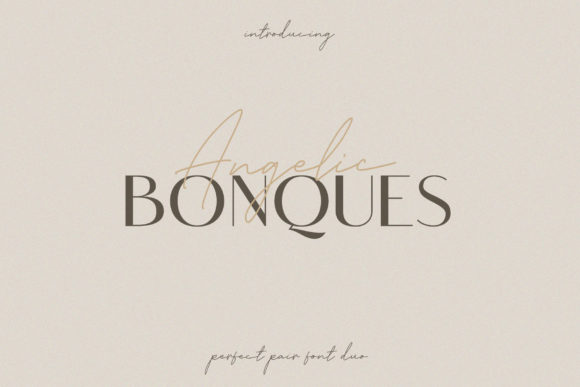 Print on Demand: Angelic Bonques Trio Sans Serif Font By craftsupplyco