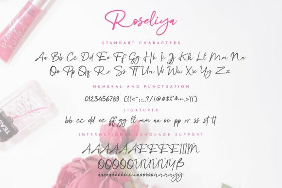 Print on Demand: Roseliya Script & Handwritten Font By Rinda Pratyas - Image 9
