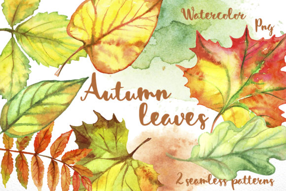 Autumn Leave Graphic Illustrations By grigaola