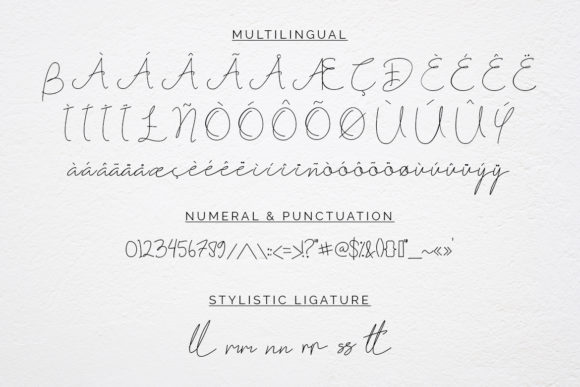 Print on Demand: Fribourg Script & Handwritten Font By Helotype - Image 10