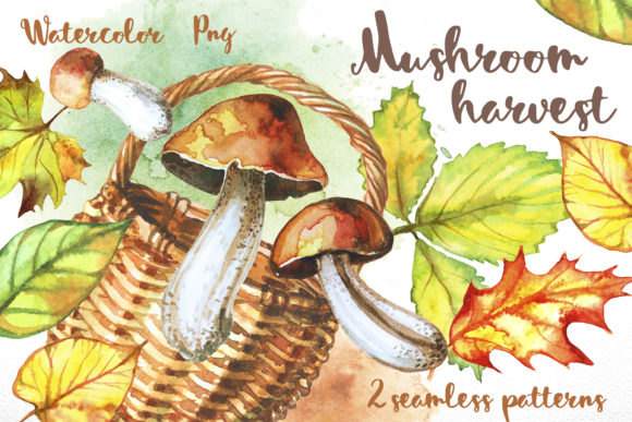 Mushroom Harvest Graphic By grigaola