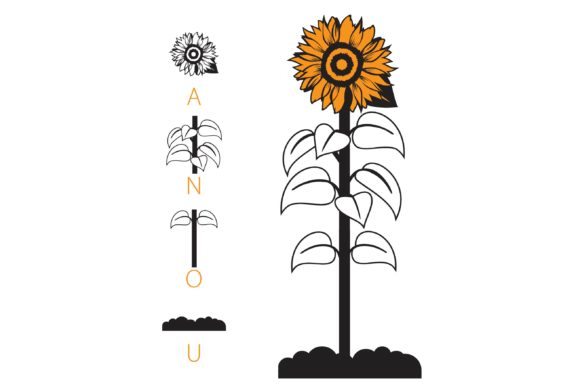 Print on Demand: Sunflowers Dingbats Font By Illustration Ink - Image 2