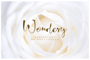 Print on Demand: Wondery Script & Handwritten Font By besttypeco