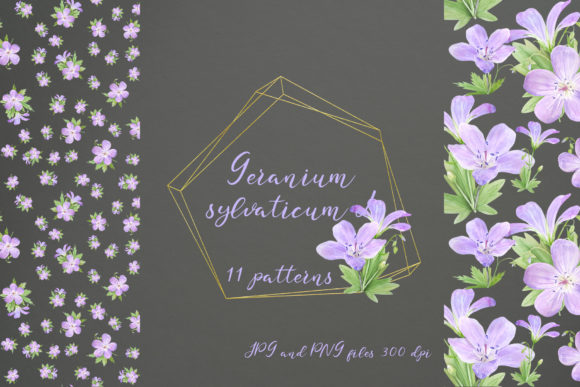Print on Demand: 11 Seamless Patterns with Geranium Graphic Patterns By Natalia Arkusha