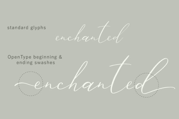Print on Demand: Ailre Heleris Script & Handwritten Font By Primafox Design - Image 2