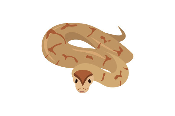 Download Free Ball Python With Detailed Face Svg Cut File By Creative Fabrica Crafts Creative Fabrica SVG Cut Files