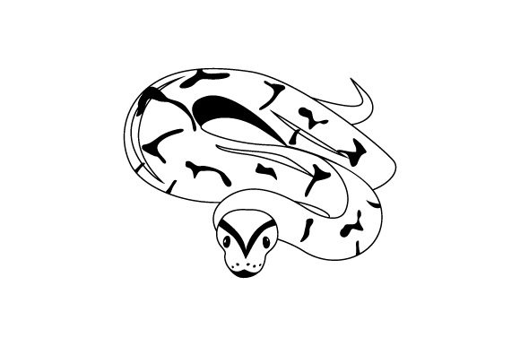 Download Free Ball Python With Detailed Face Svg Cut File By Creative Fabrica for Cricut Explore, Silhouette and other cutting machines.