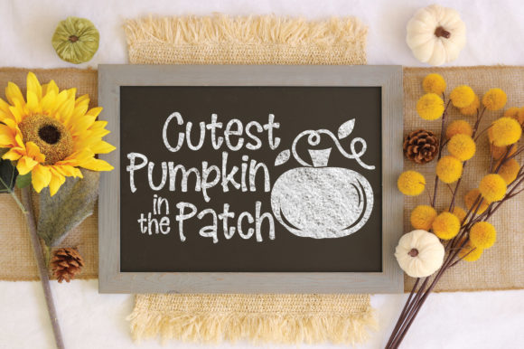Download Free Cutest Pumpkin In The Patch Graphic By Oldmarketdesigns for Cricut Explore, Silhouette and other cutting machines.
